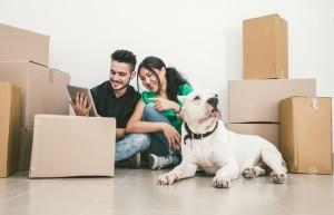 moving with a dog Phoenix AZ